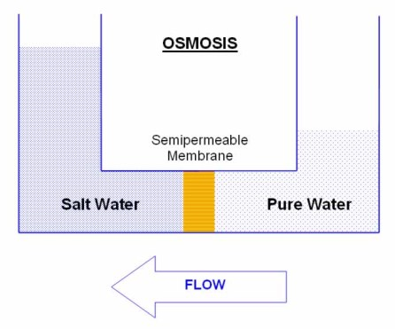 what-is-nanofiltration-osmosis.jpg